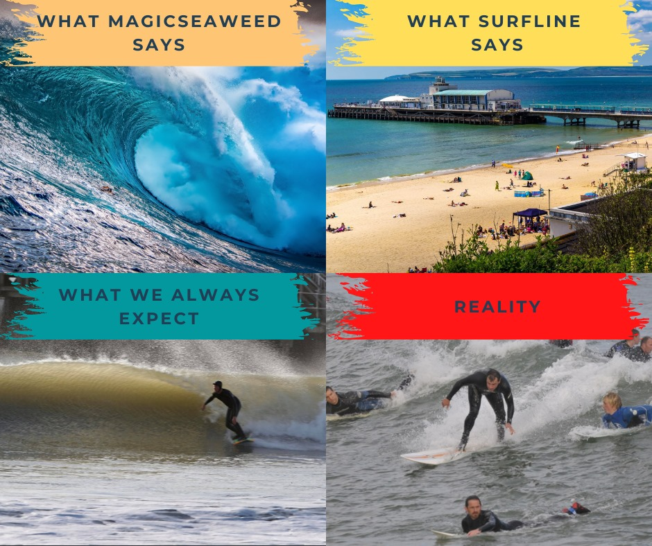 Surfing Meme Expectation Vs Reality